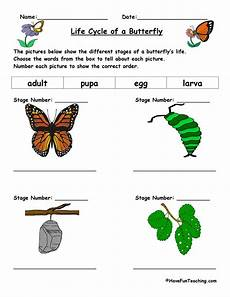 animal cycle worksheets 13938 image result for evs worksheets cycle of a butterfly sequencing cycles science