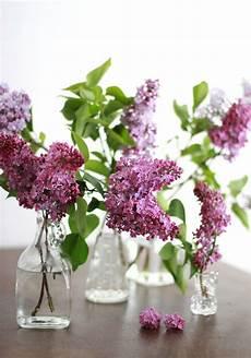deko mit flieder blumenarrangements in der vase h
