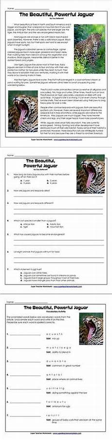 1000 images about reading and writing super teacher worksheets pinterest teacher
