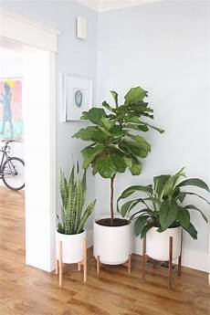 Living Room Home Decor Ideas With Plants by Large Mid Century Modern Planter With Plant Stand 12