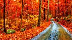 High Resolution Fall Backgrounds Laptop