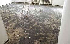 teppich unter laminat teppich unter laminat stinkt zuhause image idee