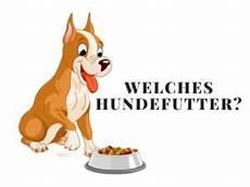 Welches Hundefutter Ist Das Beste - ᐅ welches hundefutter ist das beste f 252 r meinen hund