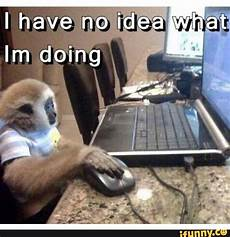 i have no idea how i do it 35 very funny monkey meme photos and pictures
