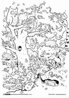 Zootiere Malvorlagen Pdf Zootiere Malvorlagen Ninjago Aiquruguay