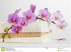 immagini candele e fiori health spa and flower orchid spa treatment relax with