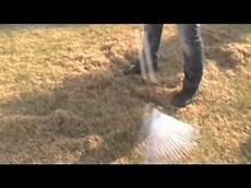 Rasenpflege Nach Dem Winter - rasenpflege nach dem winter rasen ausrechen