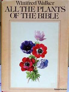 forex books not plants in the bible used as medicine 12 best bible garden images garden garden inspiration