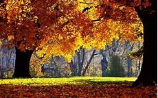 High Resolution Fall Desktop Backgrounds Hd