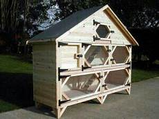guinea pig house plans pin on guinea pig