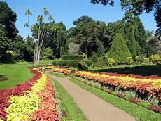 royal botanical gardens peradeniya wikipedia
