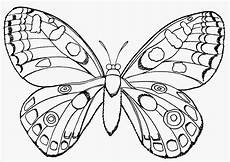 Malvorlagen Schmetterlinge Kostenlos Ausmalbilder Schmetterling Sles In World