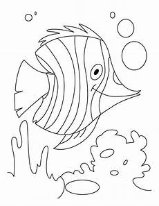 water animals printable coloring pages 17265 32 best water animals coloring pages images on children coloring pages coloring for