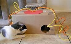 Diy Cat Box Petdiys