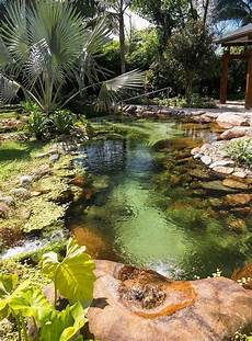 beautiful backyard pond landscaping pinterest pond