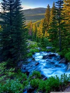 Nature Wallpaper For Phone