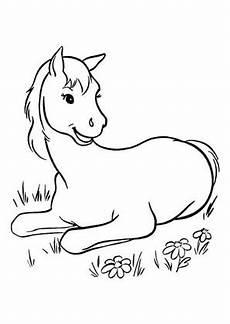 Malvorlage Liegendes Pferd Ausmalbilder Pferde Mit Fohlen Zum Ausdrucken Malvorlagen