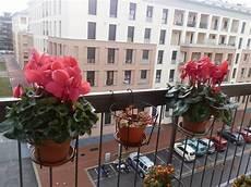 viridea vasi fioriere terrazzo vasi e fioriere fioriere per il terrazzo