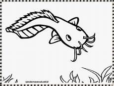 Mewarnai Gambar Ikan Lele Warna Ikan
