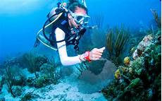 st lucia scuba diving adventure for certified divers sweet st lucia caribbean vacation