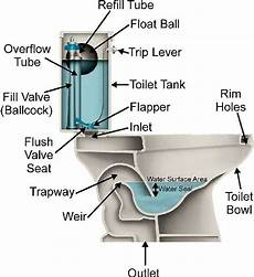 Bathroom Toilet Diagram by Toilets