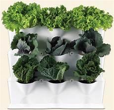 Vertikaler Garten Kaufen - minigarden vertical minigarden uk