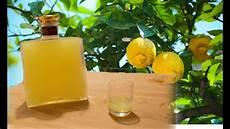 homemade limoncello italian lemon liqueur recipe youtube