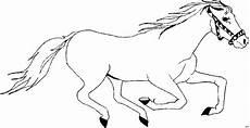 Pferde Ausmalbilder Gratis Ausdrucken Pferd Rennt 2 Ausmalbild Malvorlage Tiere