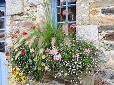 plante terrasse plein soleil plantes pour jardini 232 res peu gourmandes en arrosage