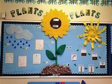 plants lesson ks1 13726 plants pollen seeds grow flower leaf water clouds soil display classroom display