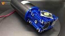 nmrv50 110zyt series high torque 12v 24v dc worm gear
