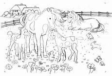 Ausmalbilder Pferde Gratis Ausdrucken Pferde Auf Der Wiese Skizze Zum Ravesnburger Puzzle