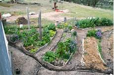 Kitchen Garden Farm by Vertigation Passive Injection Worm Juice Irrigation For