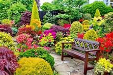 Free Desktop Wallpaper Flower Garden by Beautiful Flower Garden For Relaxing Flowers Nature