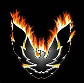 Trans AM Firebird Logo  TRANS Pinterest