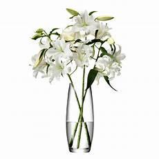 buy lsa international flower grand stem vase amara