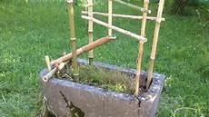Fontaine En Bambou Shishi Odoshi
