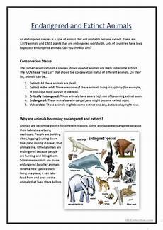 endangered animal worksheets 14298 endangered extinct animals worksheet free esl printable worksheets made by teachers