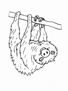 endangered animals coloring pages 16966 endangered animals coloring pages at getcolorings free printable colorings pages to print