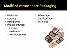 Modified Atmosphere Packaging Thesis