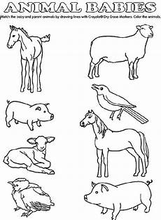coloring pages of farm animals and their babies 17449 match the baby animals to their parents by drawing lines with crayola 174 crayons or markers