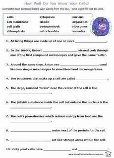 7th grade science worksheets homeschooldressage com