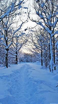 Iphone X Winter Wallpaper Hd by Winter Iphone Wallpaper Hd