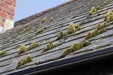 anti mousse toiture fait maison nettoyage de toiture 224 bordeaux pessac et en gironde