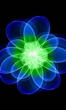 blue green flower wallpaper iphone background neon blue green flower prezi template