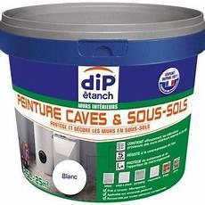Peinture Et Traitement D 233 Tanch 233 It 233 Etanch 233 It 233 Des Murs
