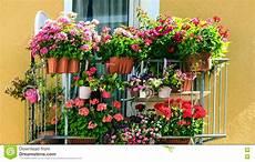 vasi da balcone balcone con molti vasi da fiori fotografia stock