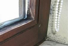 Schimmel Fensterdichtung Entfernen Extrahierger 228 T F 252 R