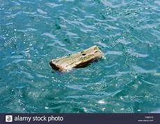 wood in water stockfotos wood in water