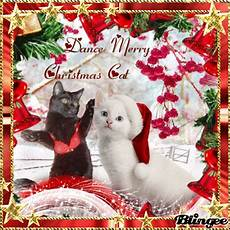 dance merry christmas cat picture 127105069 blingee com